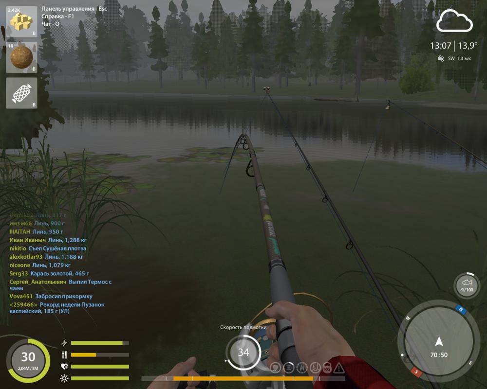 Что это такое это не зацеп...И не рыба.