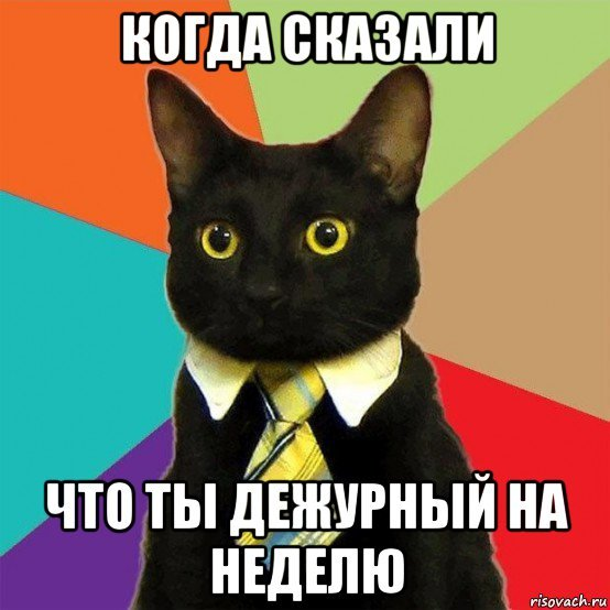 koshecka_174068262_orig_.jpg.acc85ead7097cb3aebe5353fc9a5c0da.jpg